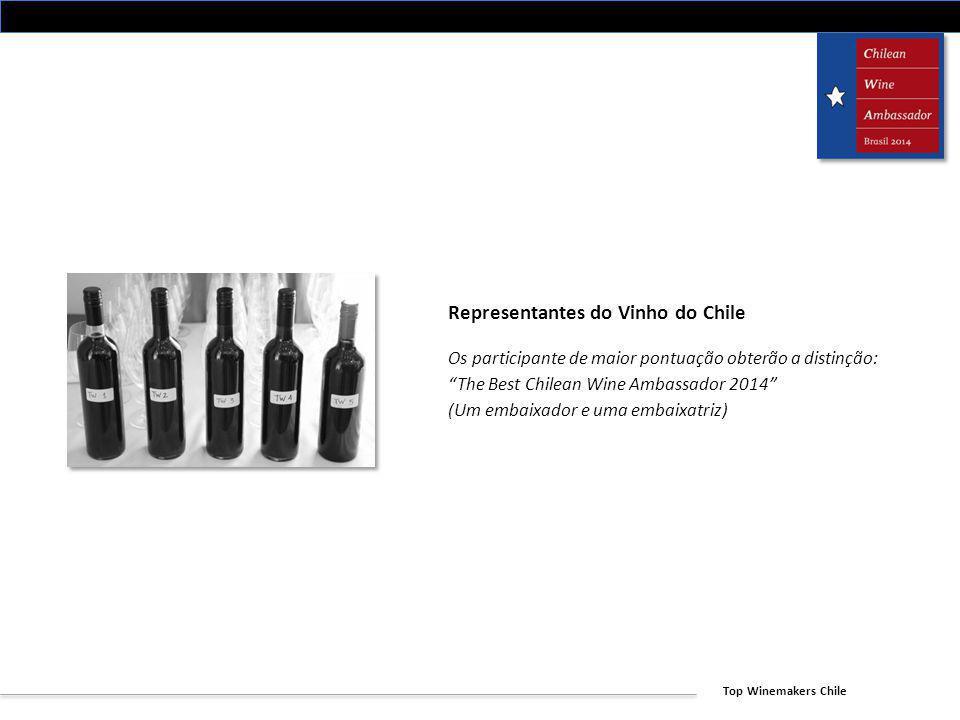 Representantes do Vinho do Chile
