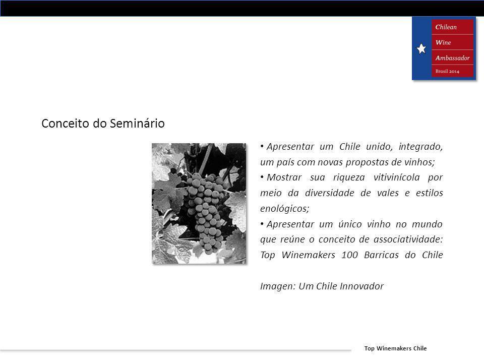 Conceito do Seminário Apresentar um Chile unido, integrado, um país com novas propostas de vinhos;
