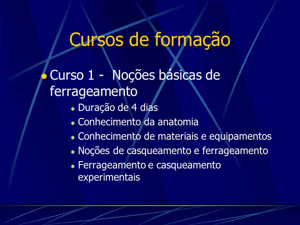 Cursos de formação Curso 1 - Noções básicas de ferrageamento