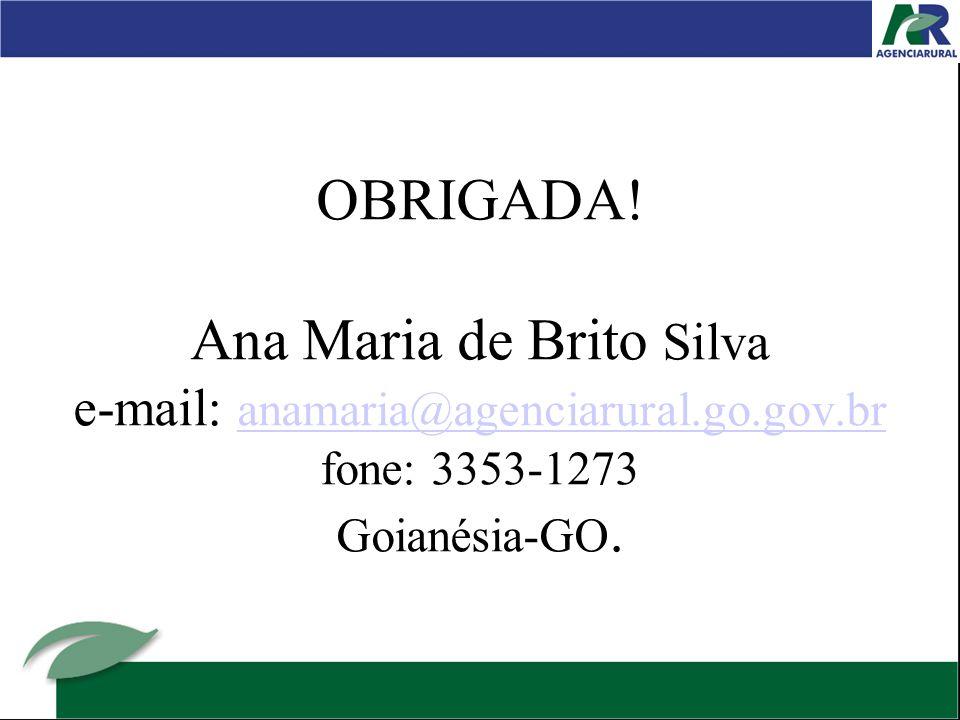 OBRIGADA. Ana Maria de Brito Silva e-mail: anamaria@agenciarural. go