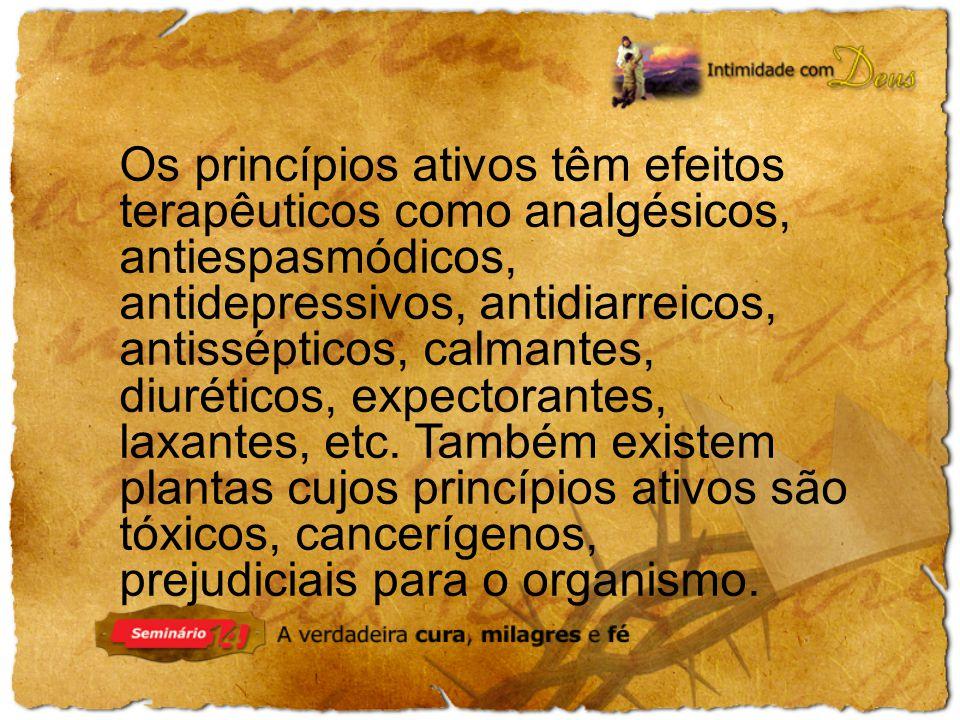 Os princípios ativos têm efeitos terapêuticos como analgésicos, antiespasmódicos, antidepressivos, antidiarreicos, antissépticos, calmantes, diuréticos, expectorantes, laxantes, etc.