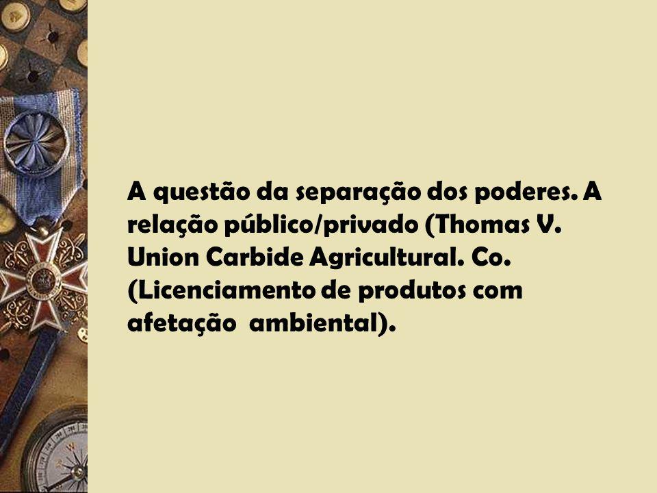 A questão da separação dos poderes. A relação público/privado (Thomas V.