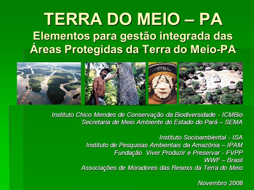 TERRA DO MEIO – PA Elementos para gestão integrada das Áreas Protegidas da Terra do Meio-PA