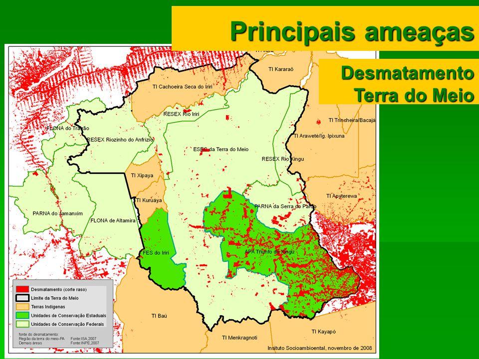 Principais ameaças Desmatamento Terra do Meio
