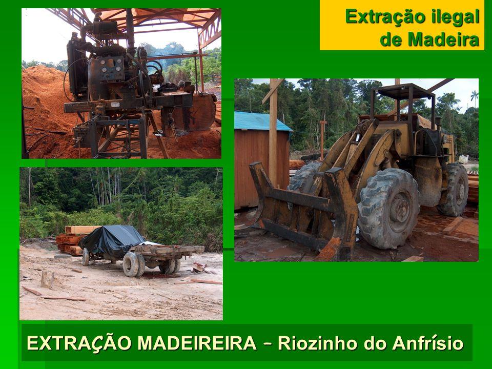 EXTRAÇÃO MADEIREIRA – Riozinho do Anfrísio