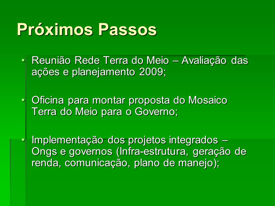Próximos Passos Reunião Rede Terra do Meio – Avaliação das ações e planejamento 2009;