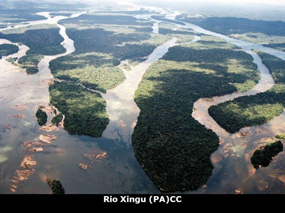 Rio Xingu (PA)CC