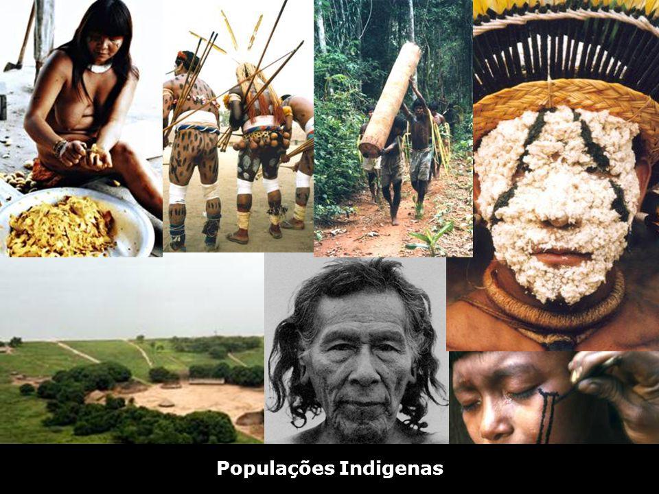 Populações Indigenas