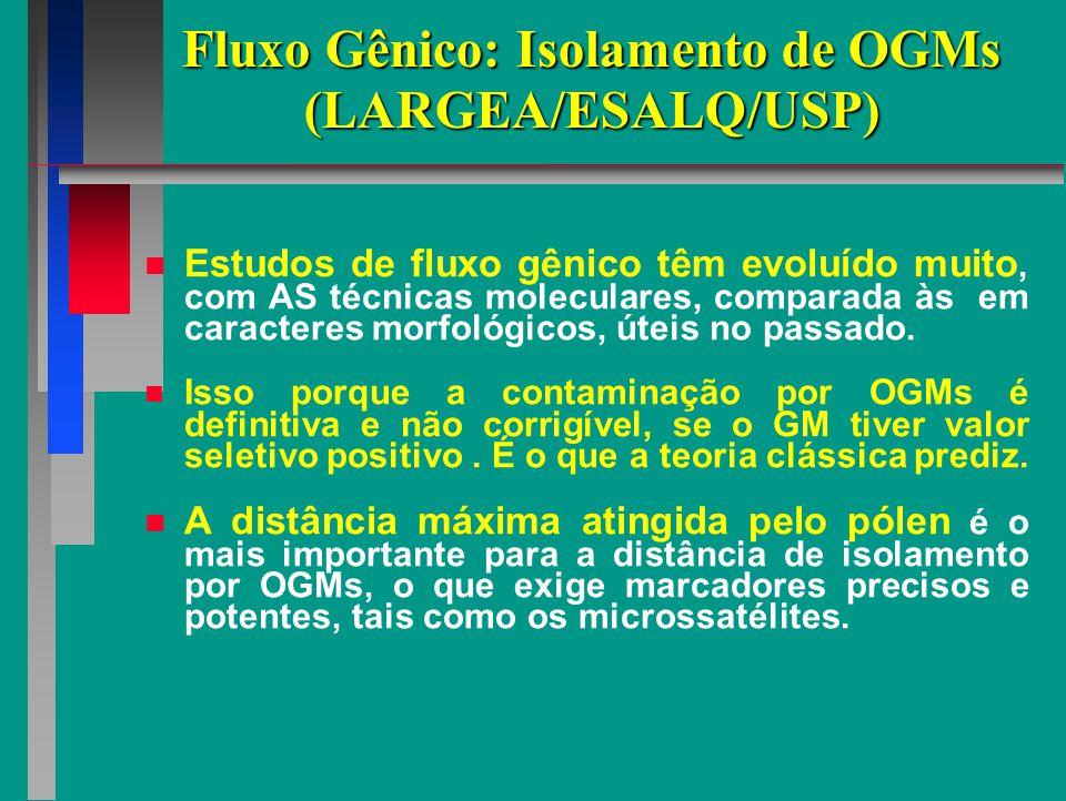 Fluxo Gênico: Isolamento de OGMs (LARGEA/ESALQ/USP)