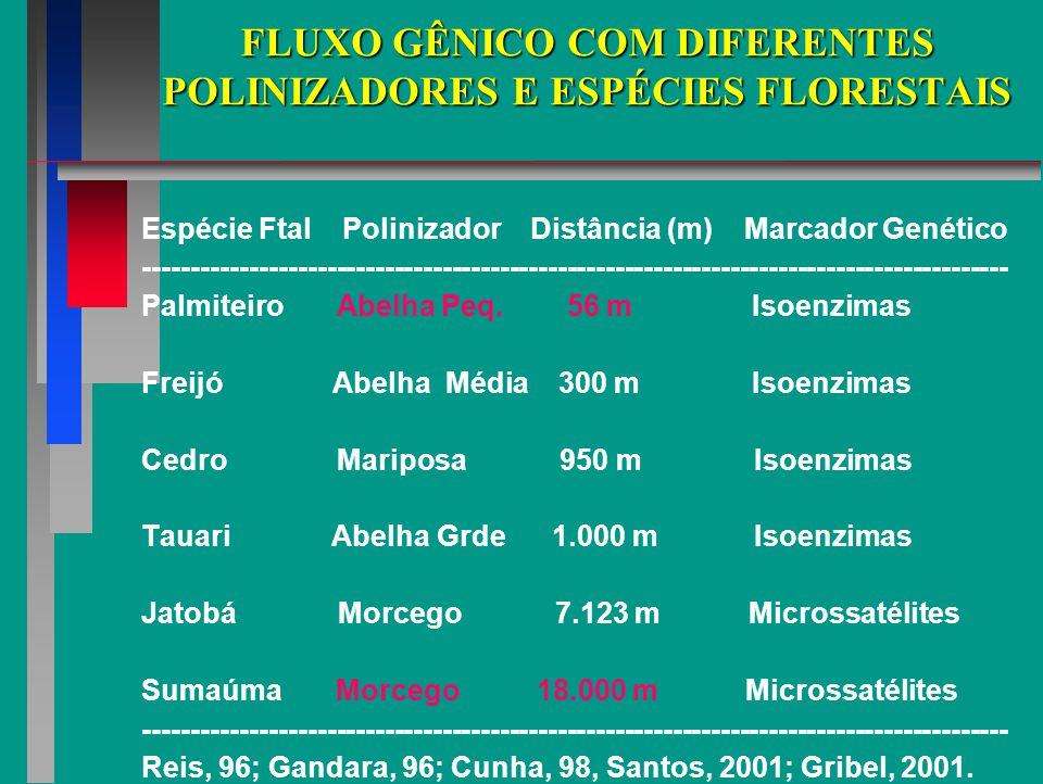 FLUXO GÊNICO COM DIFERENTES POLINIZADORES E ESPÉCIES FLORESTAIS