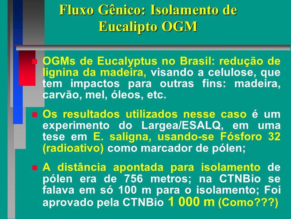 Fluxo Gênico: Isolamento de Eucalipto OGM