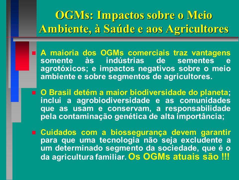 OGMs: Impactos sobre o Meio Ambiente, à Saúde e aos Agricultores