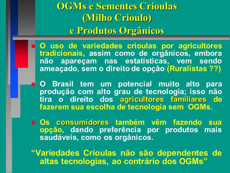 OGMs e Sementes Crioulas (Milho Crioulo) e Produtos Orgânicos