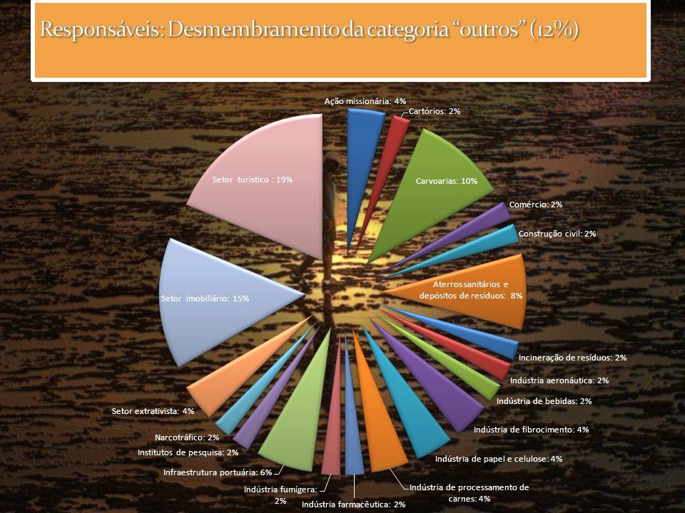 Responsáveis: Desmembramento da categoria outros (12%)