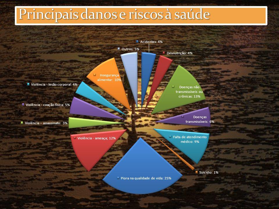 Principais danos e riscos à saúde