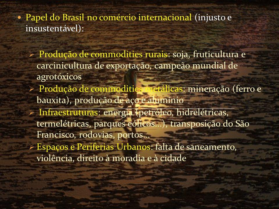 Papel do Brasil no comércio internacional (injusto e insustentável):