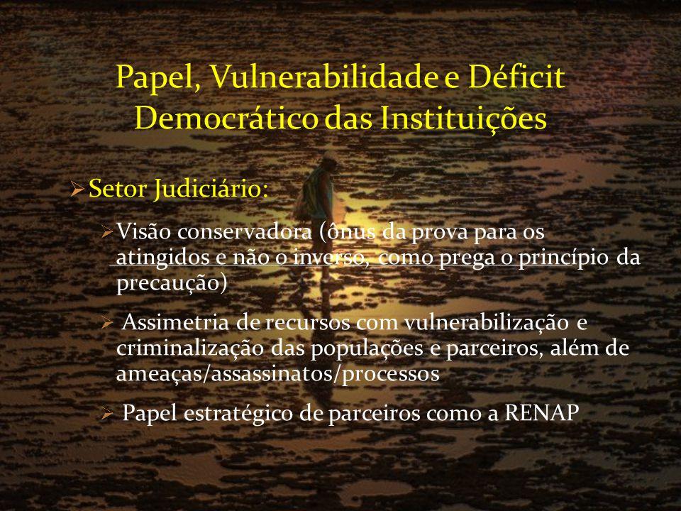 Papel, Vulnerabilidade e Déficit Democrático das Instituições