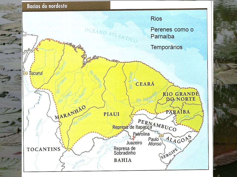 Rios Perenes como o Parnaíba Temporários