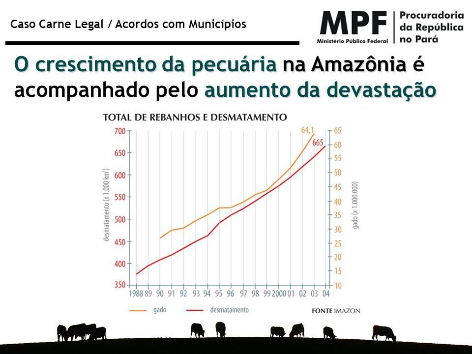 O crescimento da pecuária na Amazônia é acompanhado pelo aumento da devastação