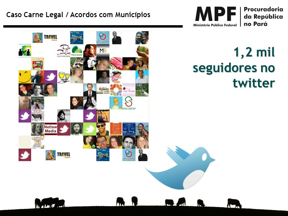 1,2 mil seguidores no twitter
