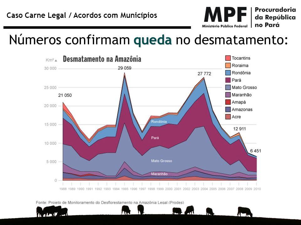 Números confirmam queda no desmatamento: