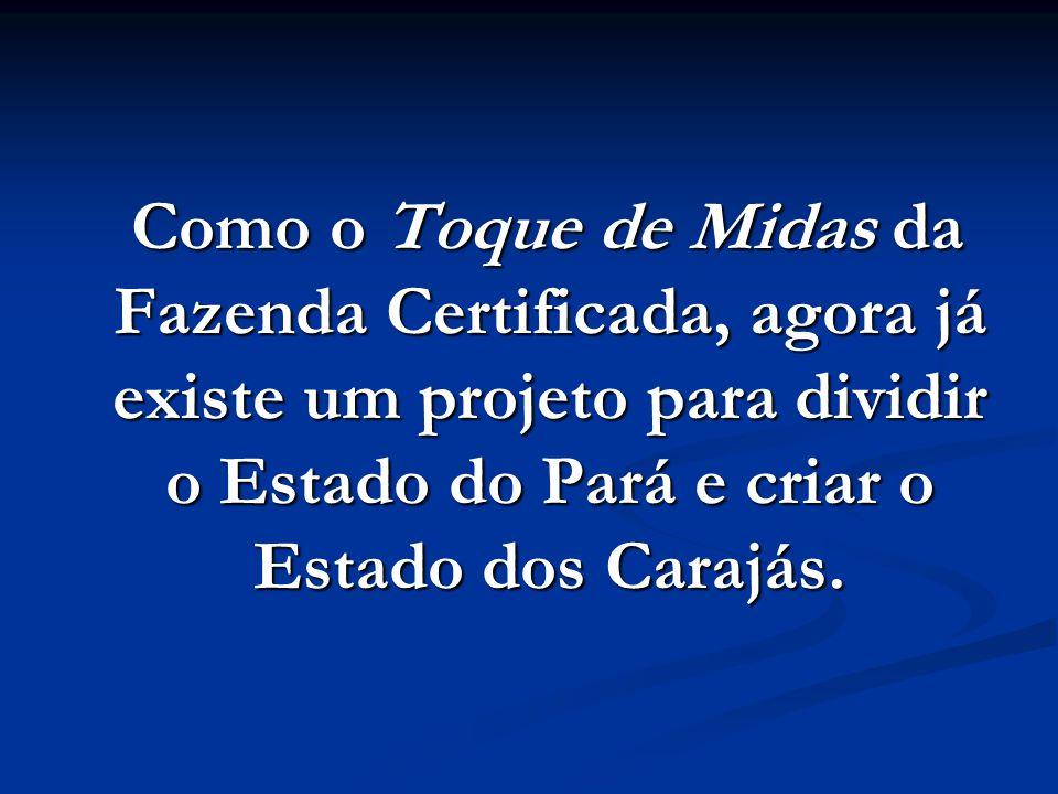 Como o Toque de Midas da Fazenda Certificada, agora já existe um projeto para dividir o Estado do Pará e criar o Estado dos Carajás.