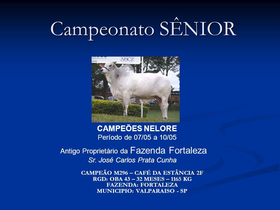 Campeonato SÊNIOR CAMPEÕES NELORE Período de 07/05 a 10/05