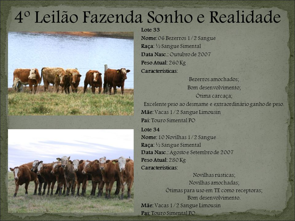 4º Leilão Fazenda Sonho e Realidade