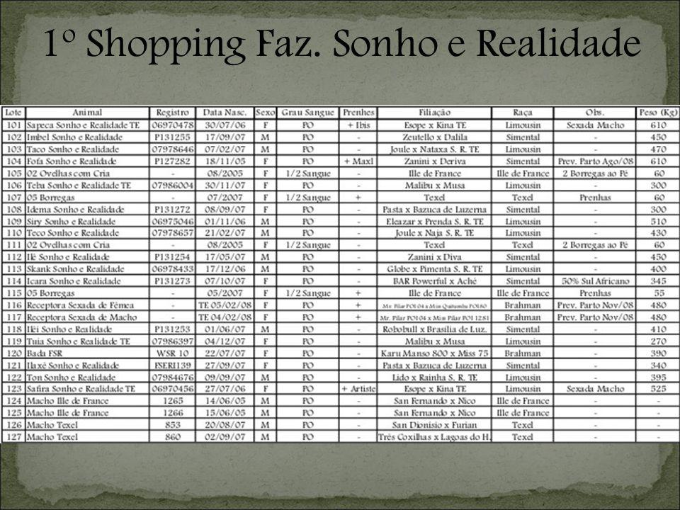 1º Shopping Faz. Sonho e Realidade