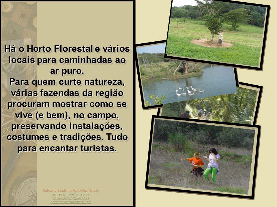 Há o Horto Florestal e vários locais para caminhadas ao ar puro