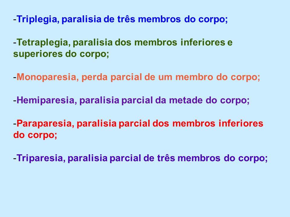 Triplegia, paralisia de três membros do corpo;