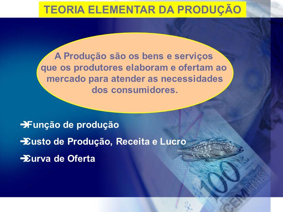 TEORIA ELEMENTAR DA PRODUÇÃO
