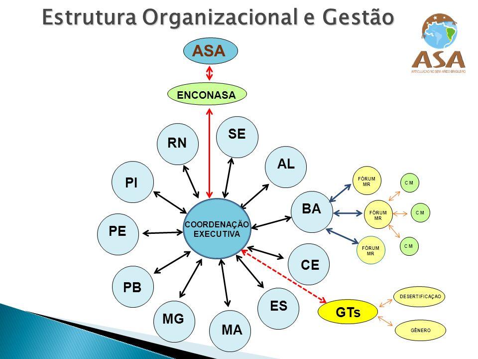 Estrutura Organizacional e Gestão