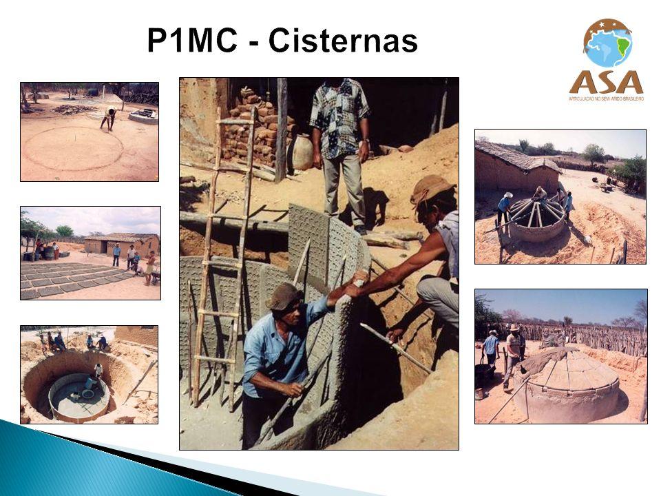 P1MC - Cisternas
