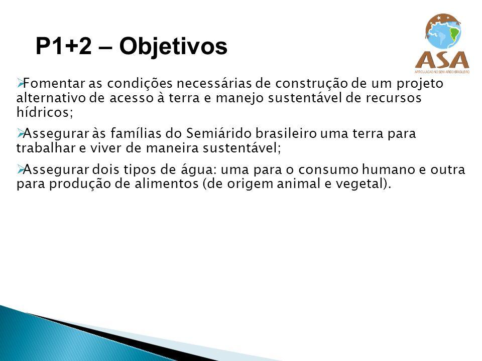 P1+2 – Objetivos