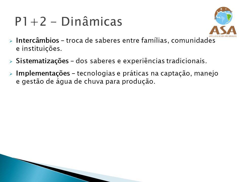 P1+2 - Dinâmicas Intercâmbios – troca de saberes entre famílias, comunidades e instituições.