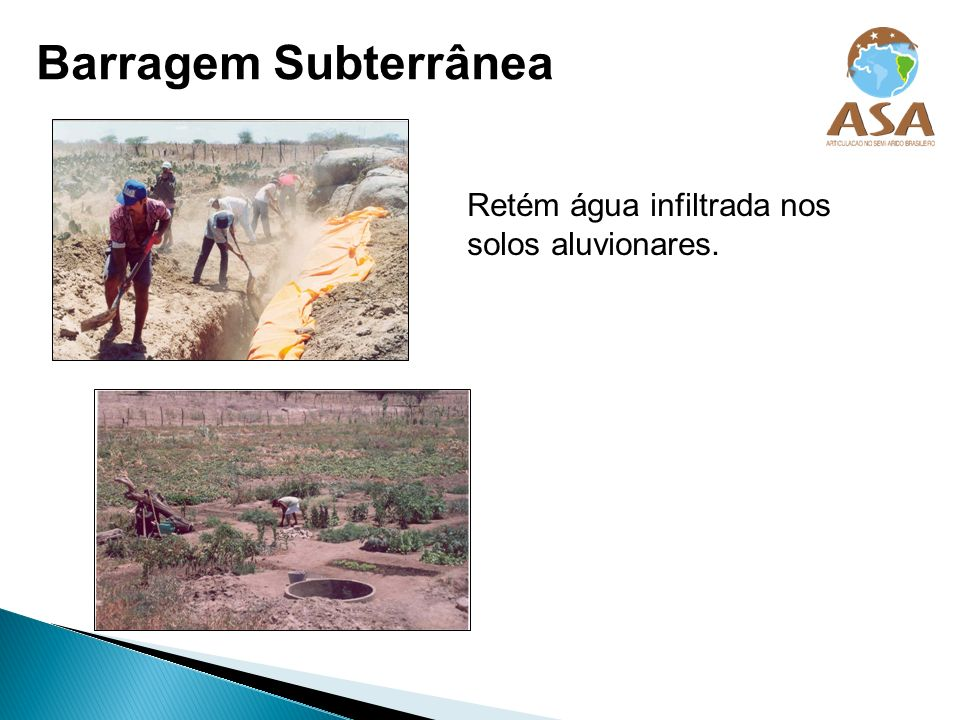 Barragem Subterrânea Retém água infiltrada nos solos aluvionares.