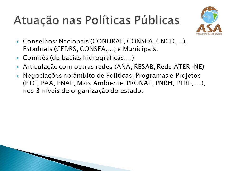 Atuação nas Políticas Públicas