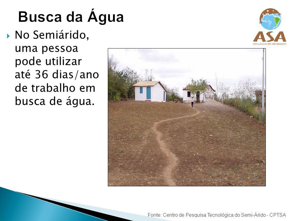 Busca da ÁguaNo Semiárido, uma pessoa pode utilizar até 36 dias/ano de trabalho em busca de água.