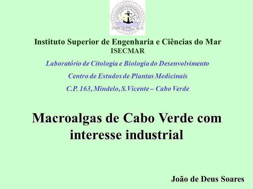 Macroalgas de Cabo Verde com interesse industrial