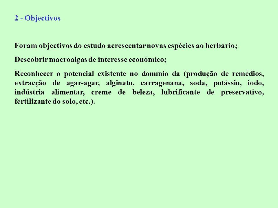 2 - Objectivos Foram objectivos do estudo acrescentar novas espécies ao herbário; Descobrir macroalgas de interesse económico;