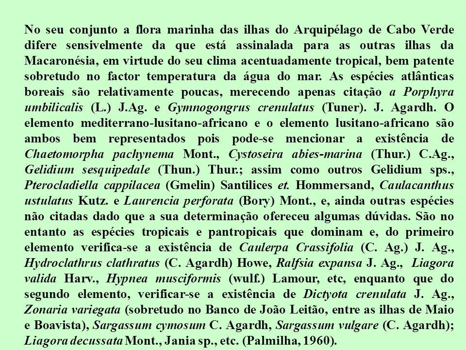 No seu conjunto a flora marinha das ilhas do Arquipélago de Cabo Verde difere sensivelmente da que está assinalada para as outras ilhas da Macaronésia, em virtude do seu clima acentuadamente tropical, bem patente sobretudo no factor temperatura da água do mar.