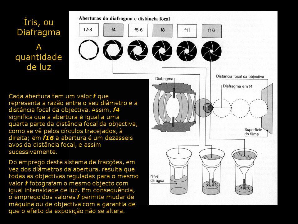 Íris, ou Diafragma A quantidade de luz