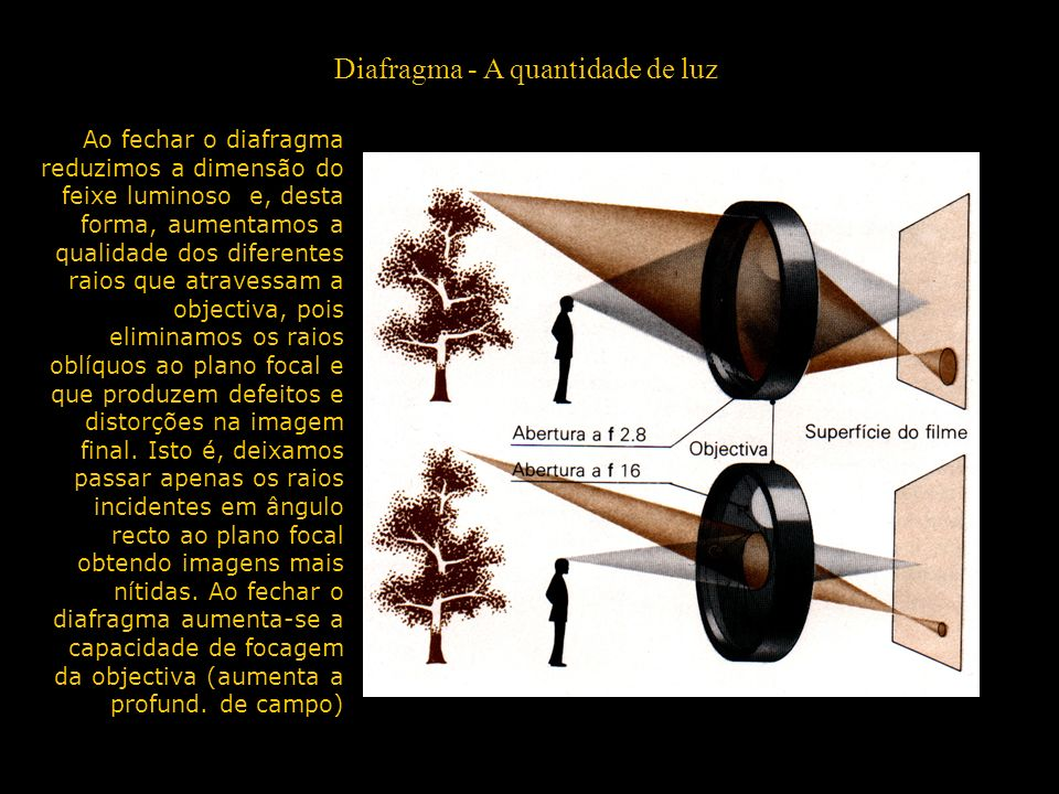Diafragma - A quantidade de luz