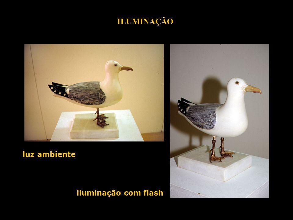 ILUMINAÇÃO luz ambiente iluminação com flash