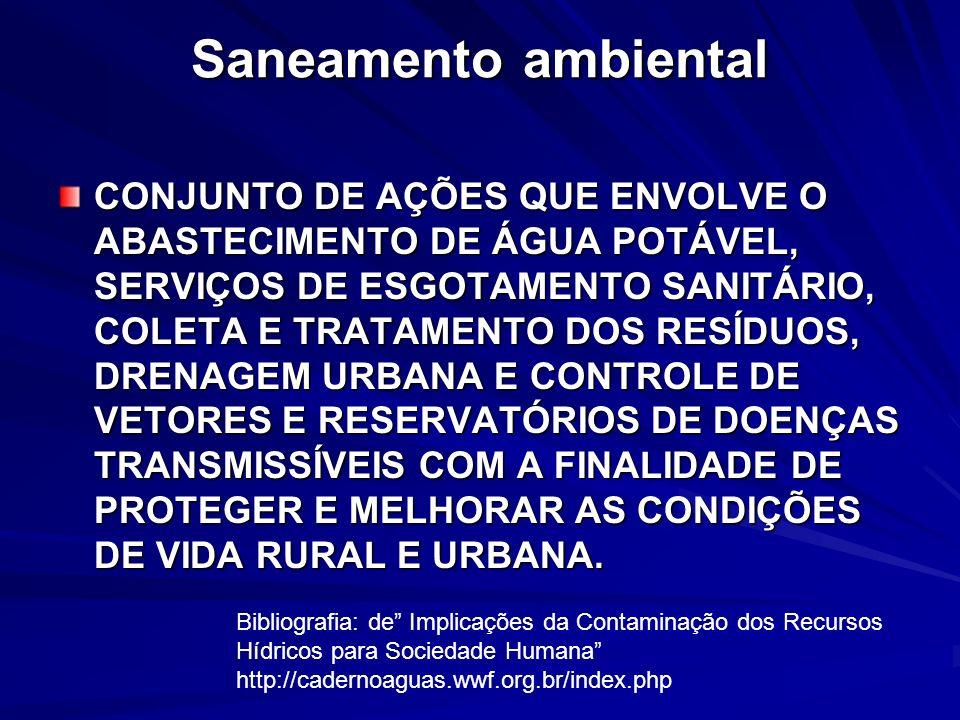 Saneamento ambiental