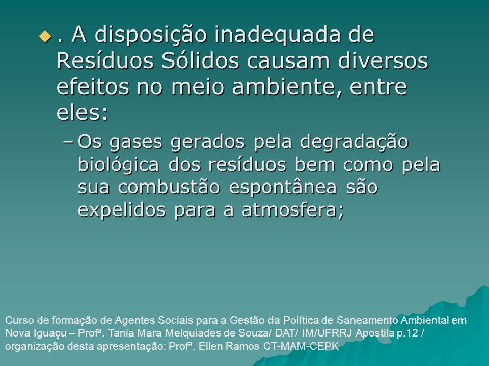 . A disposição inadequada de Resíduos Sólidos causam diversos efeitos no meio ambiente, entre eles:
