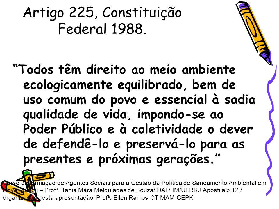 Artigo 225, Constituição Federal 1988.