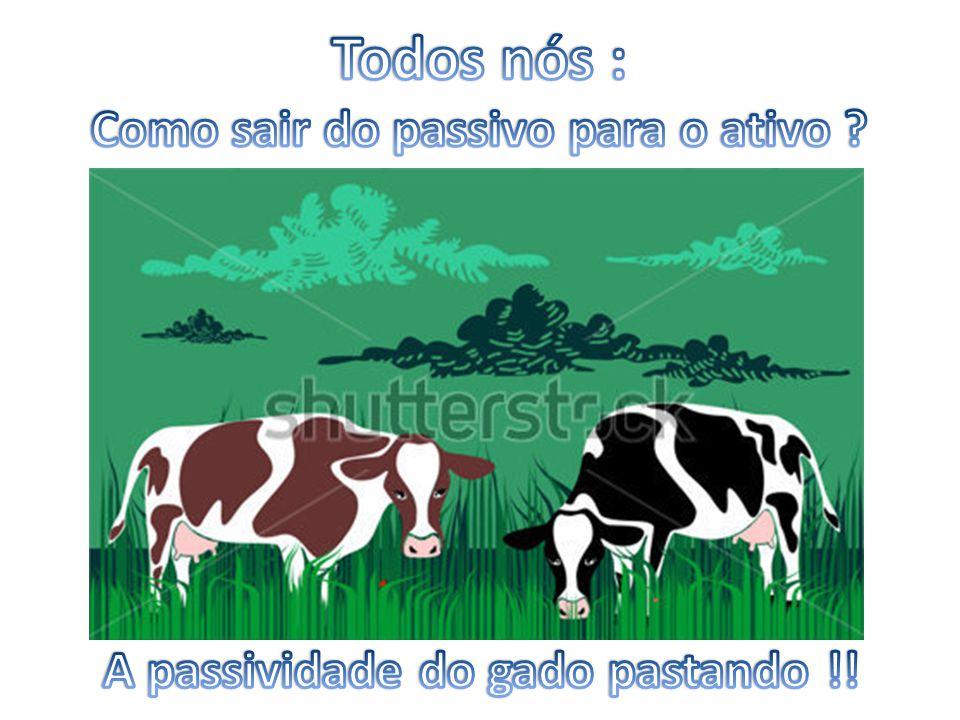 Como sair do passivo para o ativo A passividade do gado pastando !!