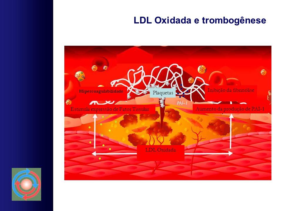 LDL Oxidada e trombogênese